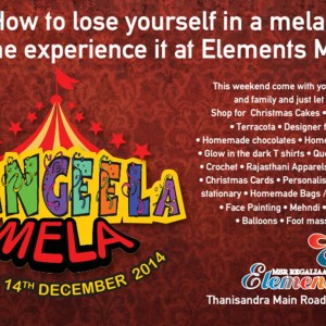 Rangeela Mela at Elements Mall